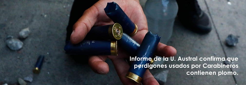 slide_perdigones02